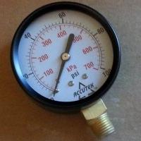 Accutek Dry Filled Pressure Gauge